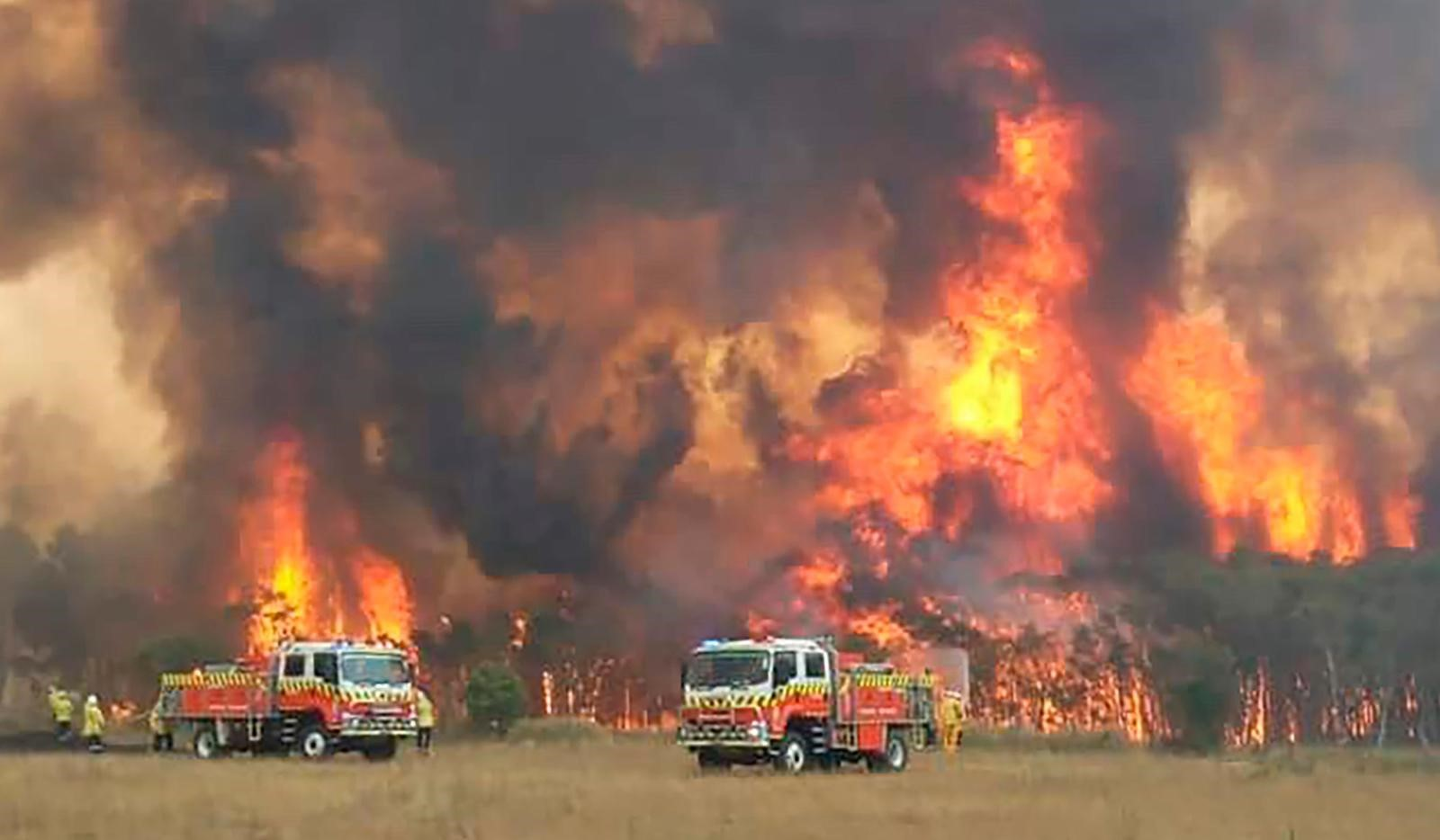 Australian bushfires raging and two fire engines in foreground